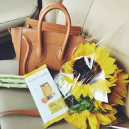Tan Celine Bag