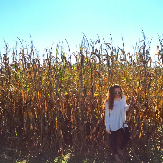 OCR Corn 2